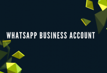 WhatsApp-Business-Account