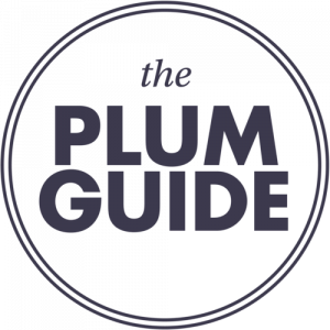 plum logo blue - London tech startups