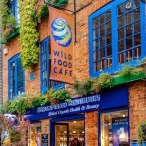 vegan restaurants islington london - Wild Food Cafe