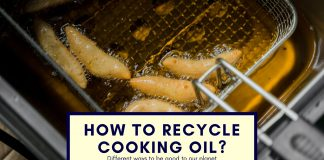 Best-ways-to-recycle-used-cooking-oil-without-pollution