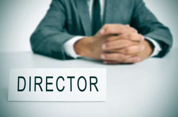 How can companies choose a director